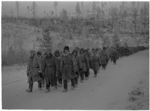 Медвежьегорск. 1941 г. Первые советские военнопленные, сдавшиеся в плен в боях под городом
