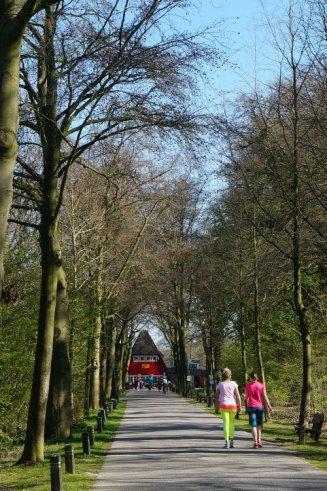 The road to the Tea House Rijnauwen.