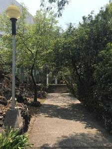 Paseo de los escultores en el Centro Cultural Universitario de la UNAM.
