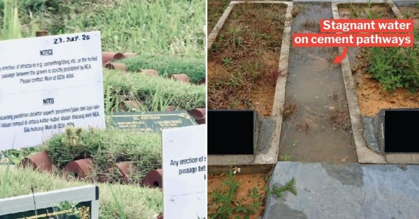 NEA Sets 2-Month Window To Break Cement Around Graves, Will Replace With Grass