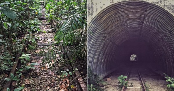 Jurong Has Train Tracks Hidden In The Forest, Trail Leads To Abandoned Tunnel & Station