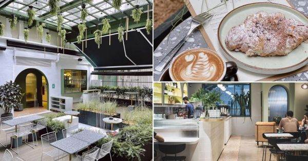 New Bukit Timah Café Has A Sunroof, Outdoor Dining & Hanging Plants For Nature-Lovers