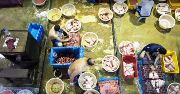 Jurong Fishery Port Cluster Now Has 741 Cases, With 44 Markets & Food Centres Linked