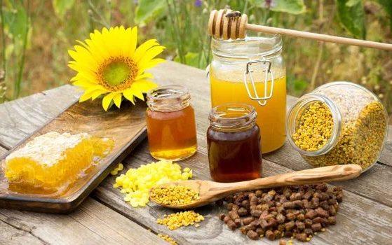 عسل ملكات النحل للرجال تعرف فوائد وأضرار العسل الملكي /متألقة
