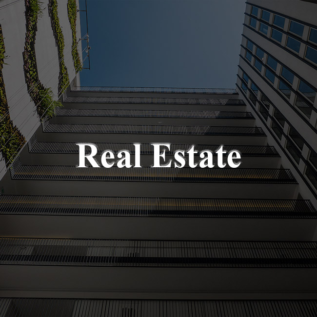 Real Estate Websites