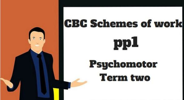 Psychomotor pp1 term two, cbc schemes of work