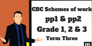 Kiswahili Grade 3 CBC schemes of work , Term three, free pdf download