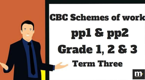 Teachers schemes of work for Literacy grade 3 term three