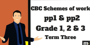 Teachers schemes of work for Literacy grade 3 term three
