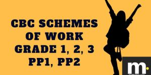 English cbc schemes of work for Term 1 Grade one 2019