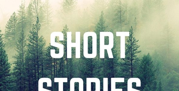 Diary of Short Stories