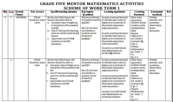 Mentor Mathematics Activities Schemes of Work term 1