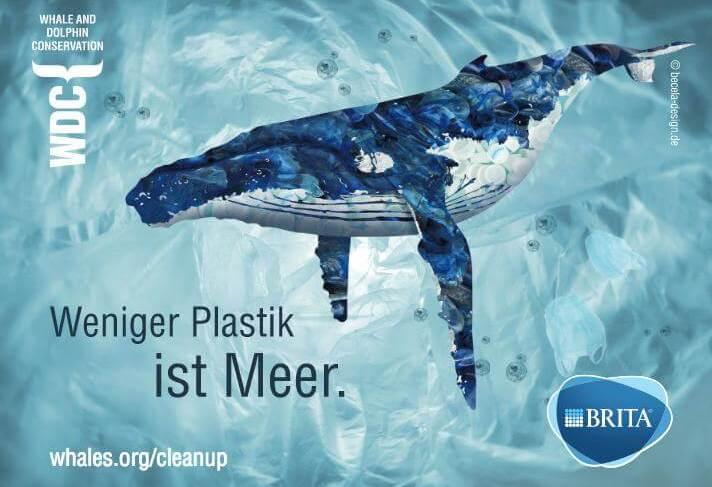 Weniger Plastik ins Meer – bundesweit an Flüssen Müll sammeln