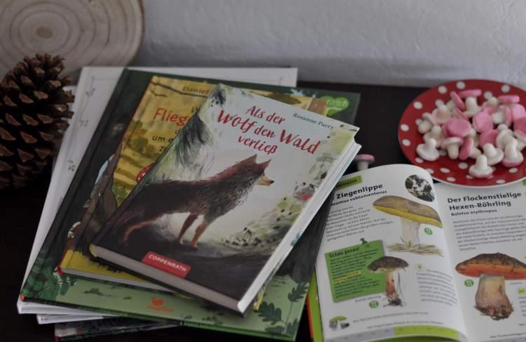 Pilze, Wölfe und Wald – Kinderbücher für den Herbst von 4 bis 9 Jahren