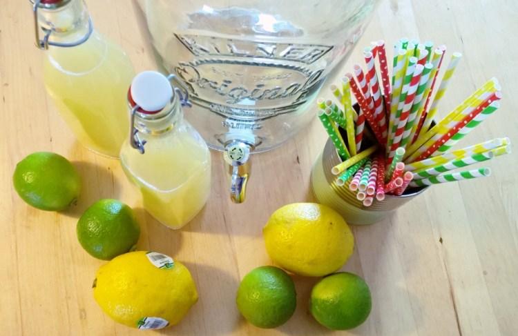 Brombeer-Eis & Limonade -Meine Freitagslieblinge am 29. Juli