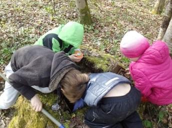 """Natur macht ruhig, Natur ist erholsam. Sind Kinder unausgeglichen oder sind zu lange am Computer gesessen, dann hilft eines: """"Auslüften"""". Warum Natur für Kinder wichtig ist und wie man Natur therapeutisch einsetzen kann, verrät Naturpädagogin Elisabeth Tomasi"""