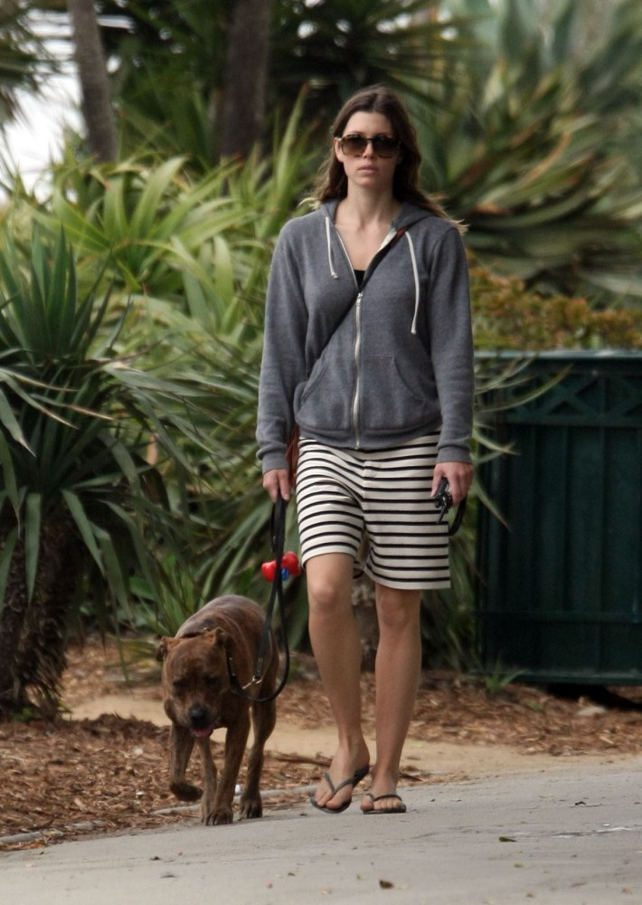 Jessica Biel walks her dog (2/6)