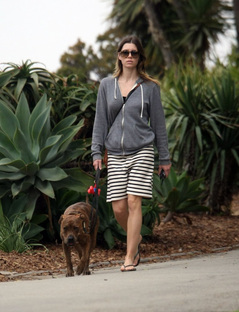 Jessica Biel walks her dog (4/6)