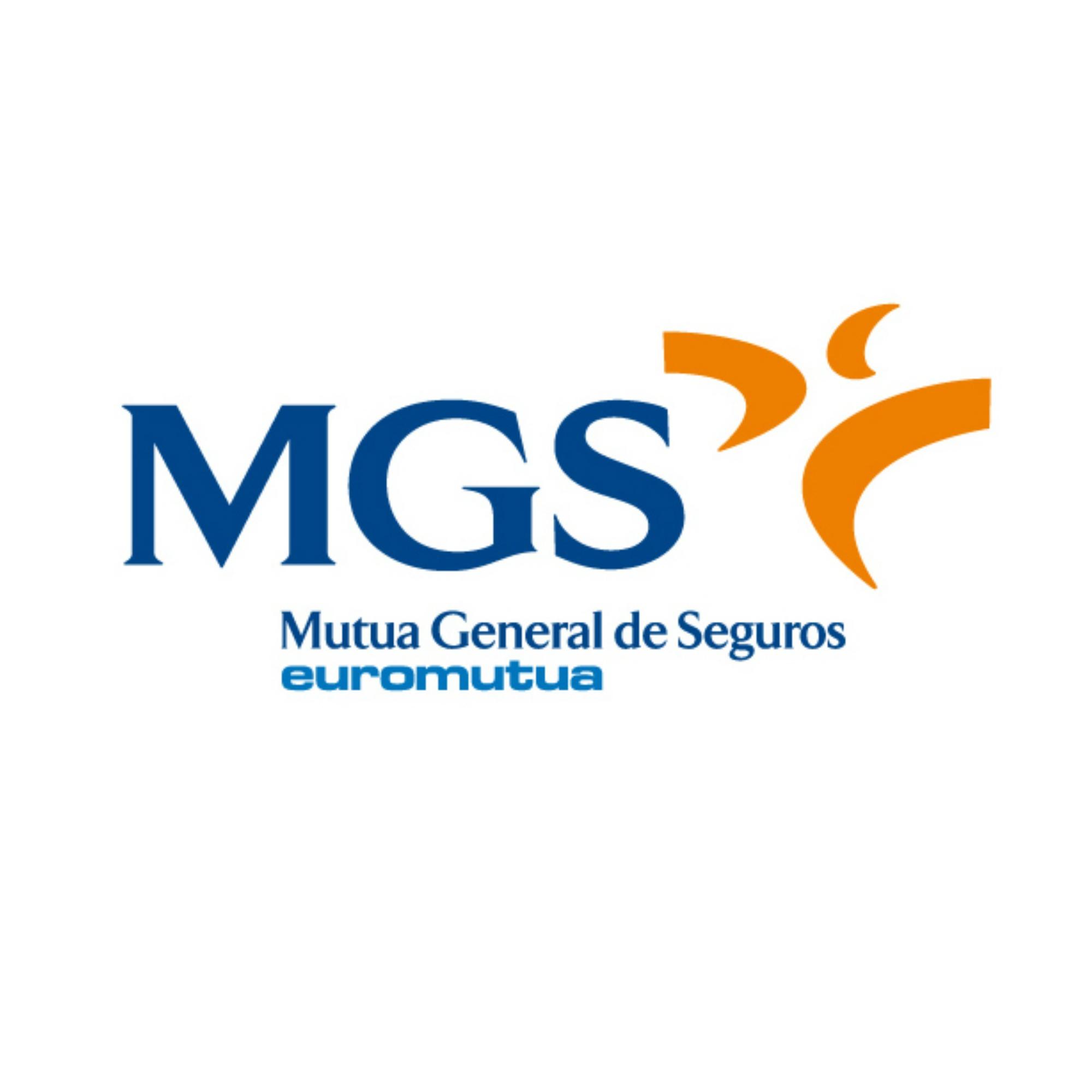 mgs seguros