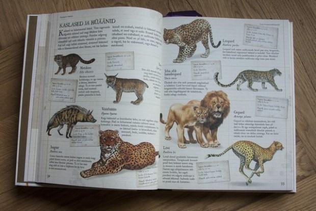 laste loomaentsüklopeedia 074_v