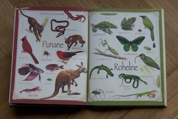 loomad raamat095_v