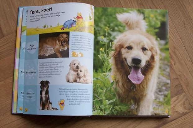 raamatud loomadest_055_v