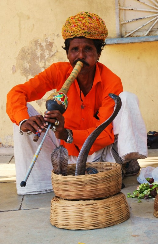 Kaarmeenlumooja Intiassa