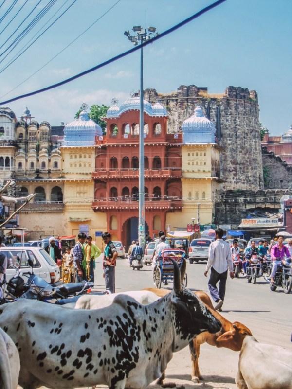 kota Intia