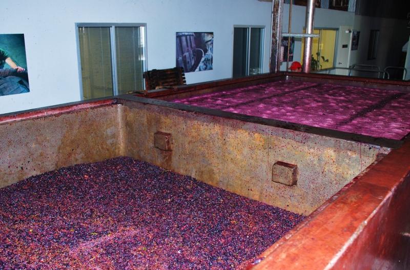 viinintekoprosessi