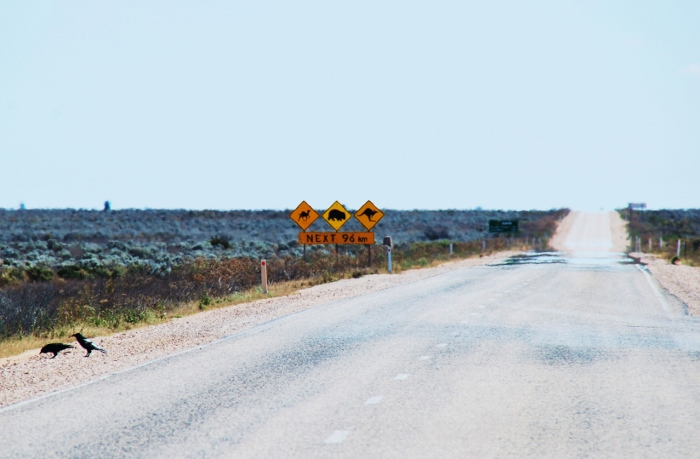 road trip australiassa