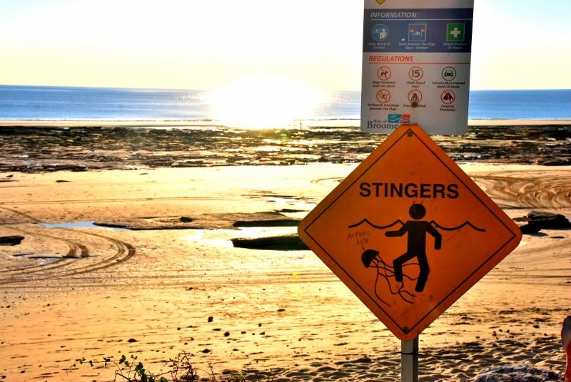 Meduusa varoituskyltti