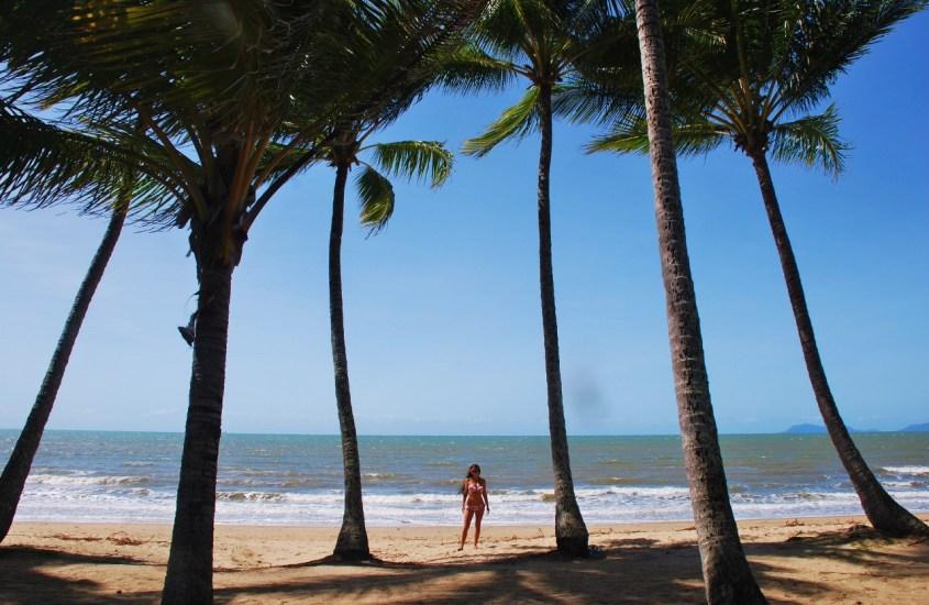 Palmun alla Cairnsin rannoilla
