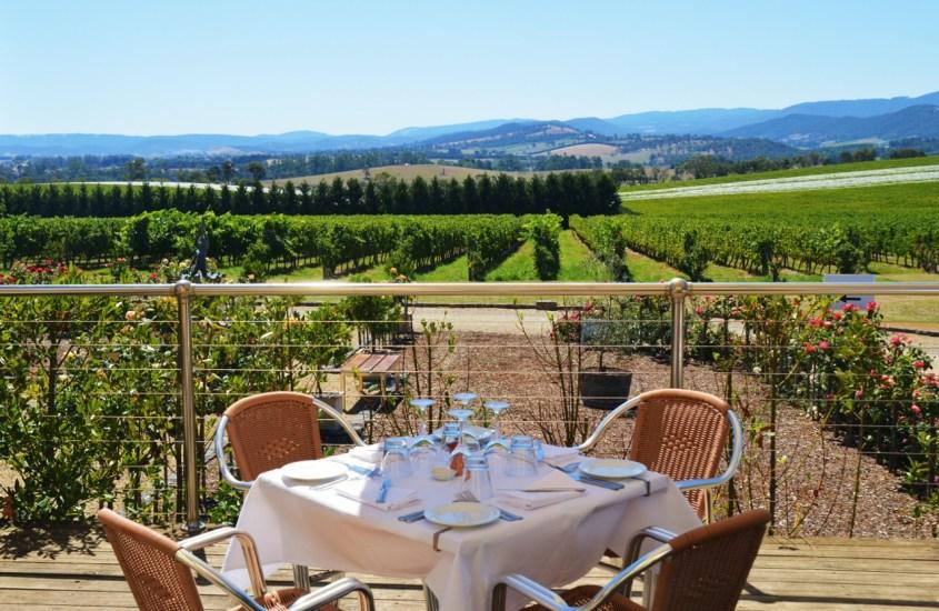 Viinin hurmiossa Yarra Valleyssä