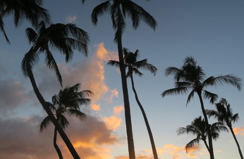 Pikavisiitti Honoluluun