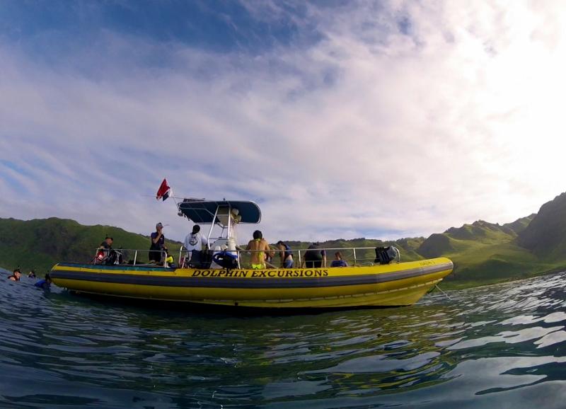 Delfiiniristeily Oahun saarella