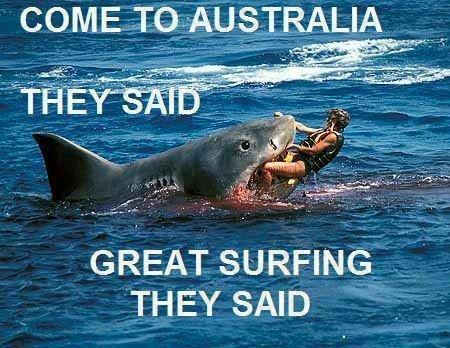 haihyokkaykset australia
