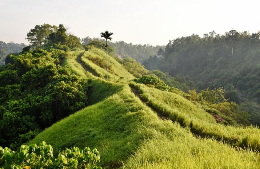 20 x Vinkit Balille – Opas onnistuneeseen lomaan