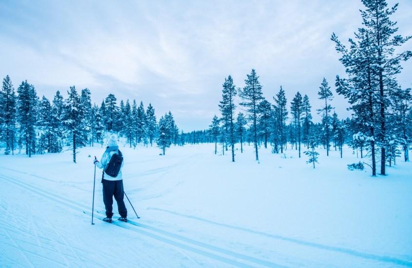 Saariselkä talvella – Poroja ja revontulia lumilomalla Lapissa