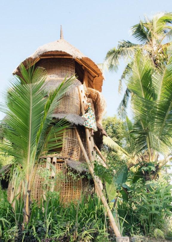 Bird's Nest | Uniikki majoitus Balilla