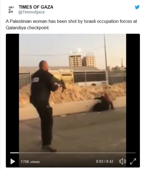 Palestinian woman shot and killed by Israeli soldiers at checkpoint - image  on https://muvison.com