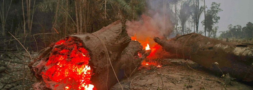 Amazon fires: Brazil bans land clearance blazes for 60 days