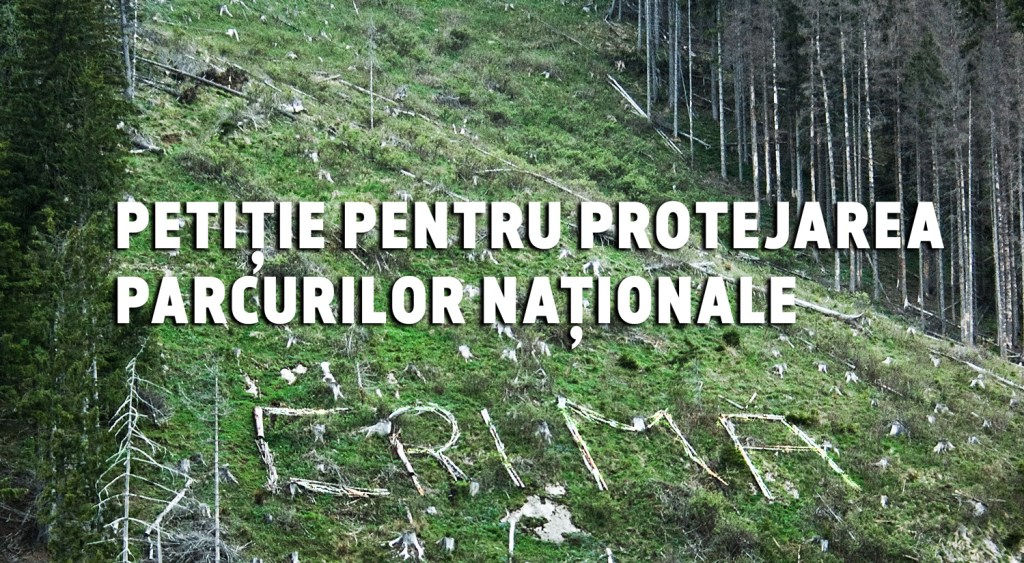 Protect valuable lands and species around the world 6