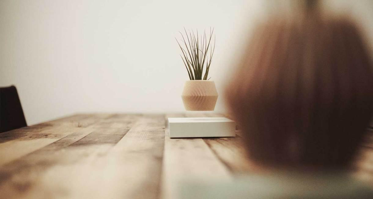 hoverbox-wood-pot-display