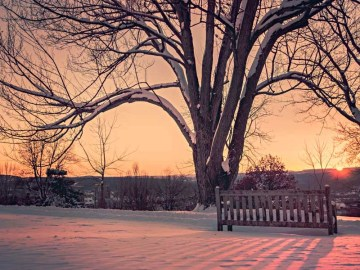 Winter Sunrise By Ryan McGuire