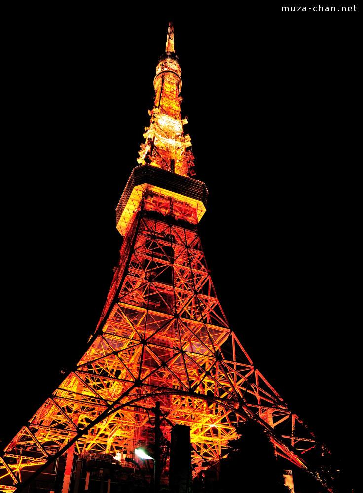 12 Views Of Tokyo Tower
