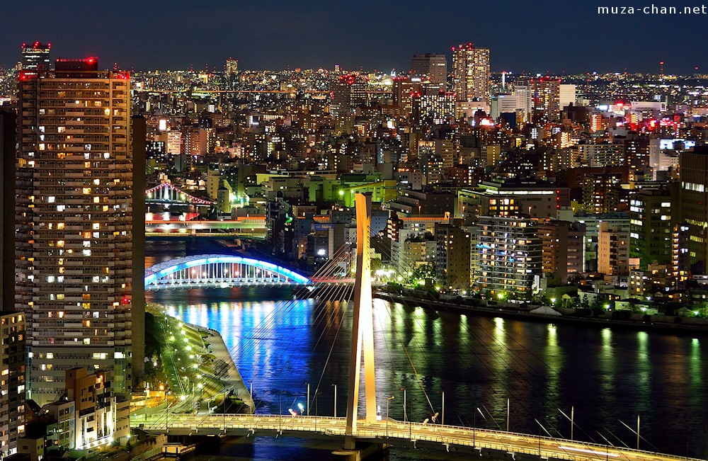Image result for sumida river at night