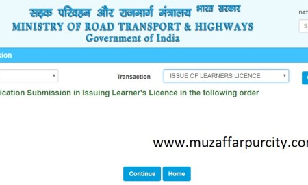 driving licence onine