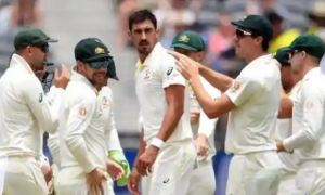 Australia announced the team for the Test series against India, this young player got a place