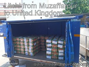 Litchi from Muzaffarpur to United Kingdom featured