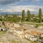 Трибина: Грижата за Хераклеја Линкестис денес, гаранција за утре